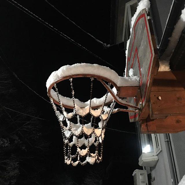 雪の様子を見ようとドアを開けたら、キツネと鉢合わせ。横っ飛びして向かいの斜面を駆け上っていった。驚かせてすまん。道路は大して積もってないけど、明け方にかけてまだ雪雲は来そうだなぁ…ストーブの燃料ペレット買うのを明日伸ばしにしていたら、在庫が底をついてしまった。そんな時に限って雪が積もる。このままじゃ明日も雪はなくならないし、フィアット500でトレーラー引っ張ってペレット買いに山を下りることもできない。早晩、独居老人凍死のニュースが出そうだな。(笑) (from Instagram)