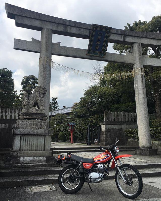 XL250S @わら天神春はバイクが良い!花粉症がなければ、、、 (from Instagram)