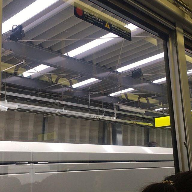 JR山陰線の新駅、梅小路。最近は駅ビルをやたらと豪華立派に作って客の囲い込みを図るくせに、肝腎要のプラットホーム周辺構造の何と安っぽいことよ。H鋼材に波板屋根。まるで倉庫か工場じゃね?京都駅に着いたらホームはラッシュアワー並みの人混み。車内も外国人で混んでたけど、折り返し運転の電車に乗ろうと待っていた人で動けない。これ、僕の知ってるどこかうら寂しい山陰線とちゃうし、、、 (from Instagram)
