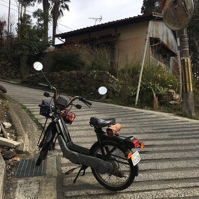 バリエーターCiaoが鷹ヶ峰⇔千束の急坂を登り切れることがわかった。それも勢いつけてとかペダルアシストとかじゃなく、途中で止まって坂道発進もOK。トルクに余裕があるからウィリーしそうになる。エンジンに負担が大きいのでもう登ることはないだろうが、いざの時にはこの道も選択肢に入るということ。ここの坂が登れたら、日本中の車道は高速道路以外どこでも走れるな。 (from Instagram)