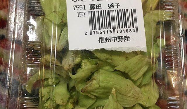 長野のフキノトウ(東北、北海道じゃバッケ/ばっきゃ)をいただいた。どうやって食べよかな。。。 (from Instagram)