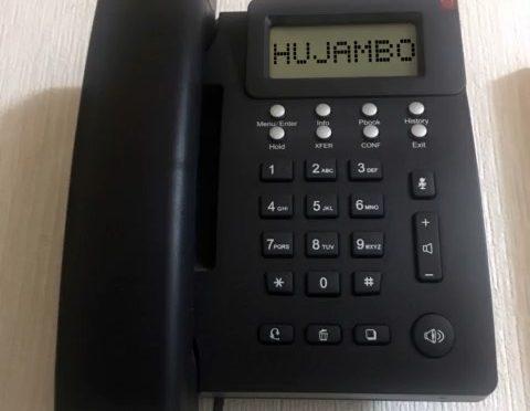 昔、留守電に使っていたなんちゃってのスワヒリ語応答メッセージ。