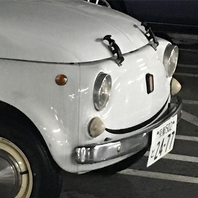 駐車場で見失って、他の車の陰から顔を覗かせてるのを見つけたとき、、、思った。やっぱ、何気にカワイイなあ、、、!^_^ (from Instagram)