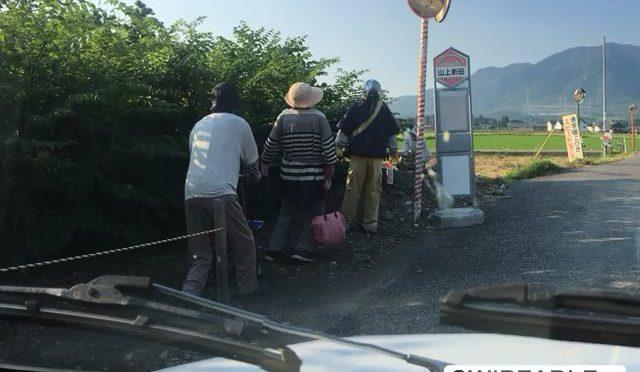 先日、ふなすしアイスをハシゴしようと友人と近江八幡から奥永源寺へ車を走らせていた時に、偶然入った裏道で見かけた田舎の人たち。日が傾いていたのに目的地はまだ遠く、急いでいたのに思わず車を停めて写真を撮った。 (from Instagram)