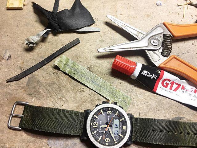 腕時計バンドの余りをブラブラさせない輪っか(何て言う部品かは知らない)が2つとも擦り切れてしまった。作業するときに引っかかりそうでやばいから作った。チンクのシート破れの修理に使った人造レザーの端切れがこんなところで役に立つとは、、、 色や風合いもオリジナルとそっくりにできちゃった。しめしめ、、、 (from Instagram)