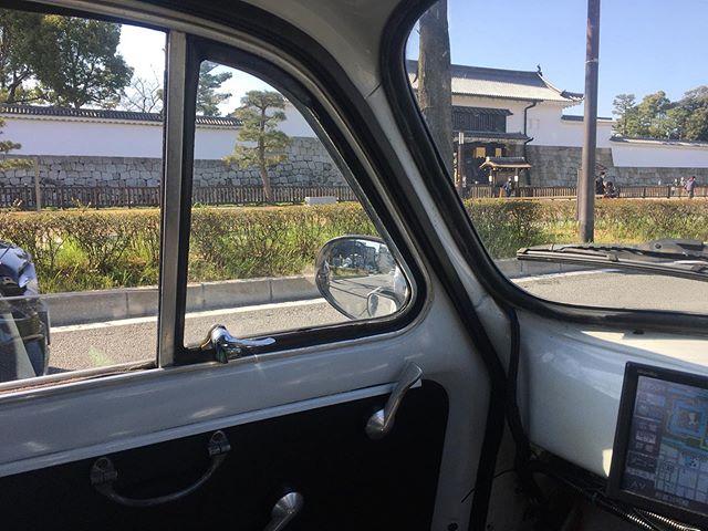こんなに人のいない二条城、久しぶりに見た。京都の観光は壊滅的かも。京都市長が観光客誘致に旗振りしてたのに、先の選挙じゃ手のひら返して「もう来ていらん」と言ってたが。お望み通りになってる。雨後のタケノコみたく出現したゲストハウスや民泊はどうしてるんやろ。 (from Instagram)