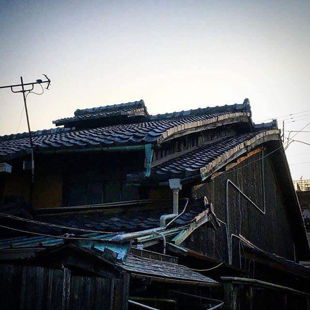 黄昏れる屋根。 (from Instagram)
